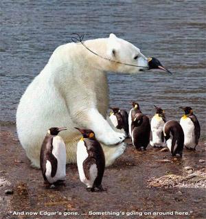 Маскировка белого медведя