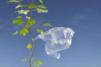 http://yapotrebitel.ru/wp-content/uploads/2012/11/plastiktuete-baum-gross_1.jpg