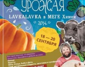 biggest_mega_lavka_KV